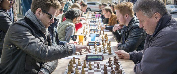 Godt nytt sjakkår!